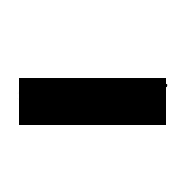 Logo Vice