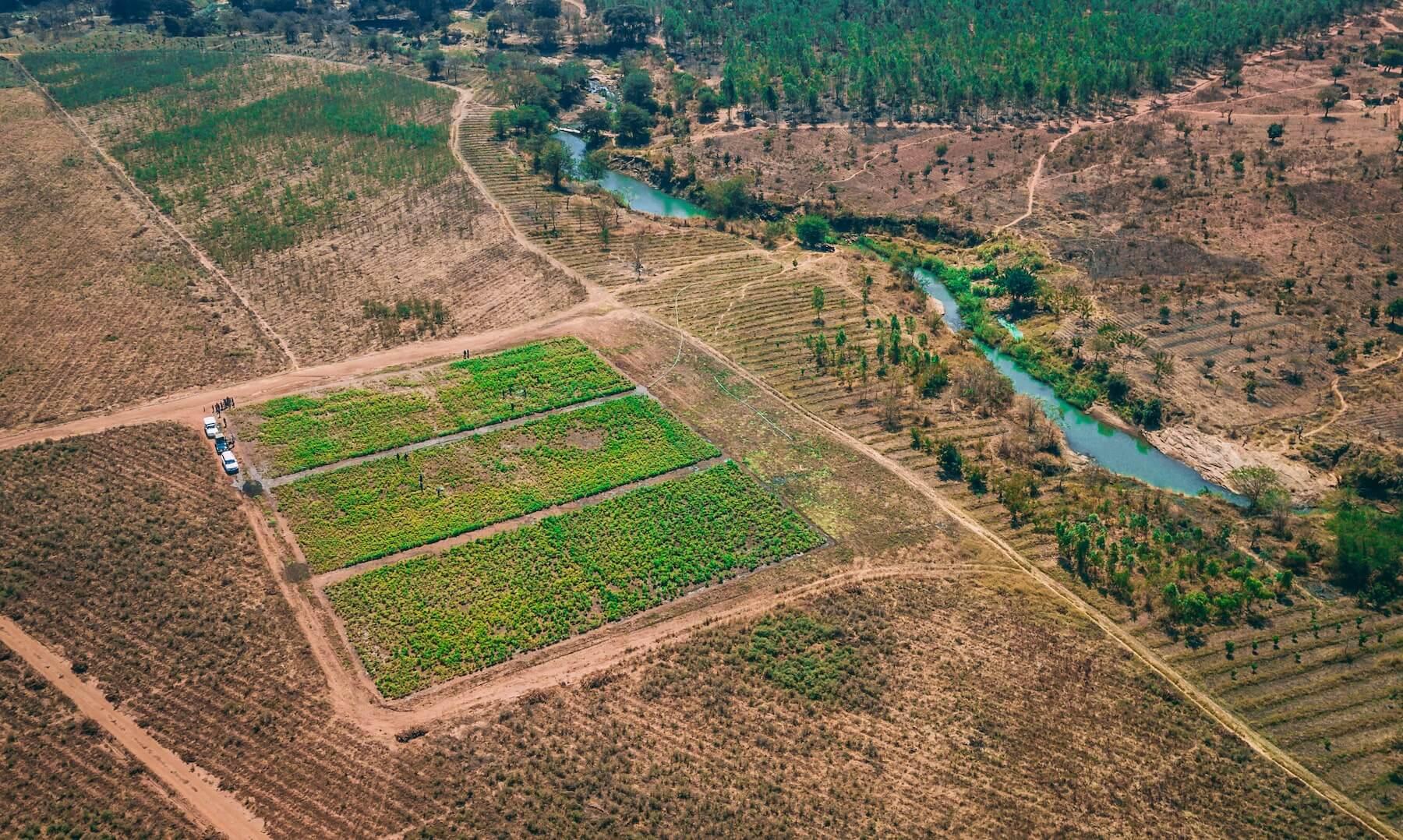 Yamba Health Farm, Malawi